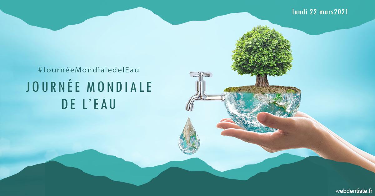 https://dr-do-thi-thuy-thao.chirurgiens-dentistes.fr/Journée de l'eau 1